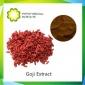 枸杞提取物,多糖40%,50%,枸杞粉,厂家长期稳定供货